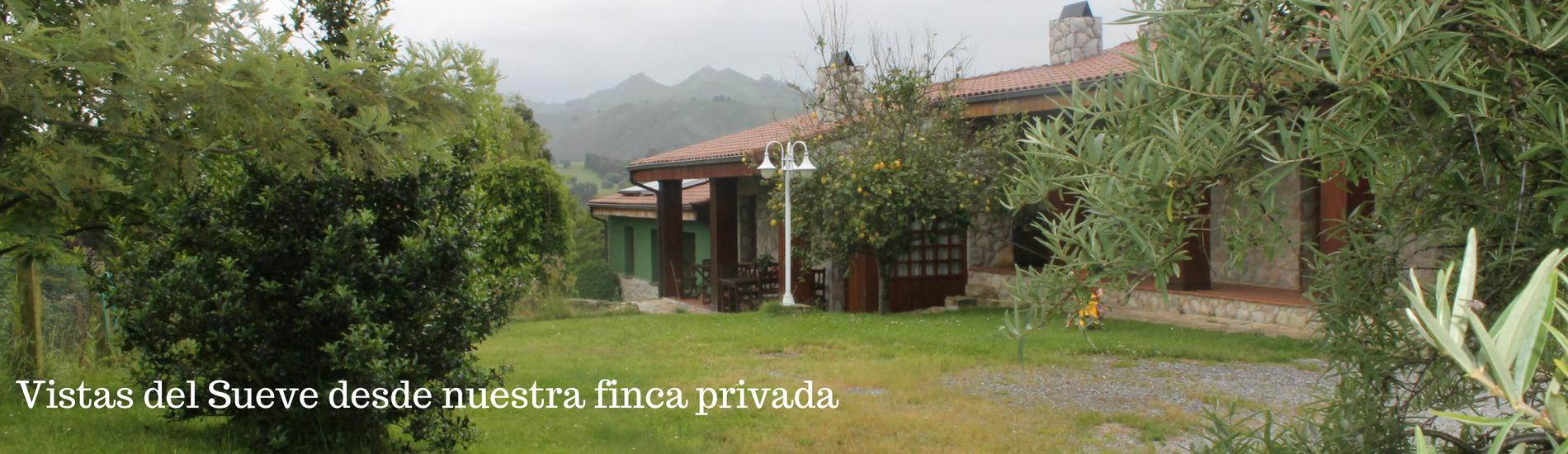 Nuestra casa, Ribadesella